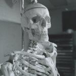 Why I Love Bones